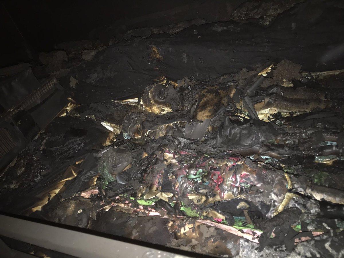 コロナ シュープリーム 父母 月日 火事に関連した画像-05