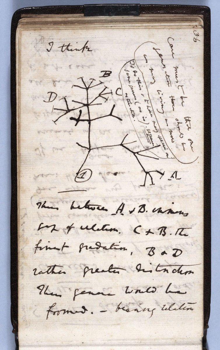 """test Twitter Media - Un dia com avui es publicava """"l'Origen de les Espècies"""" de #Darwin  161 anys després, en #CiènciaiConvivència seguim usant i ensenyant evolució per explorar i comprendre el nostre entorn i aconseguir una societat més justa, crítica i amb respecte per l'evidència.  #EvolutionDay https://t.co/uoHWLxdgaY"""