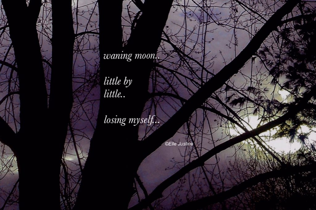 waning moon..little by little...losing myself...#micropoetry https://t.co/BkqY3tF3oB