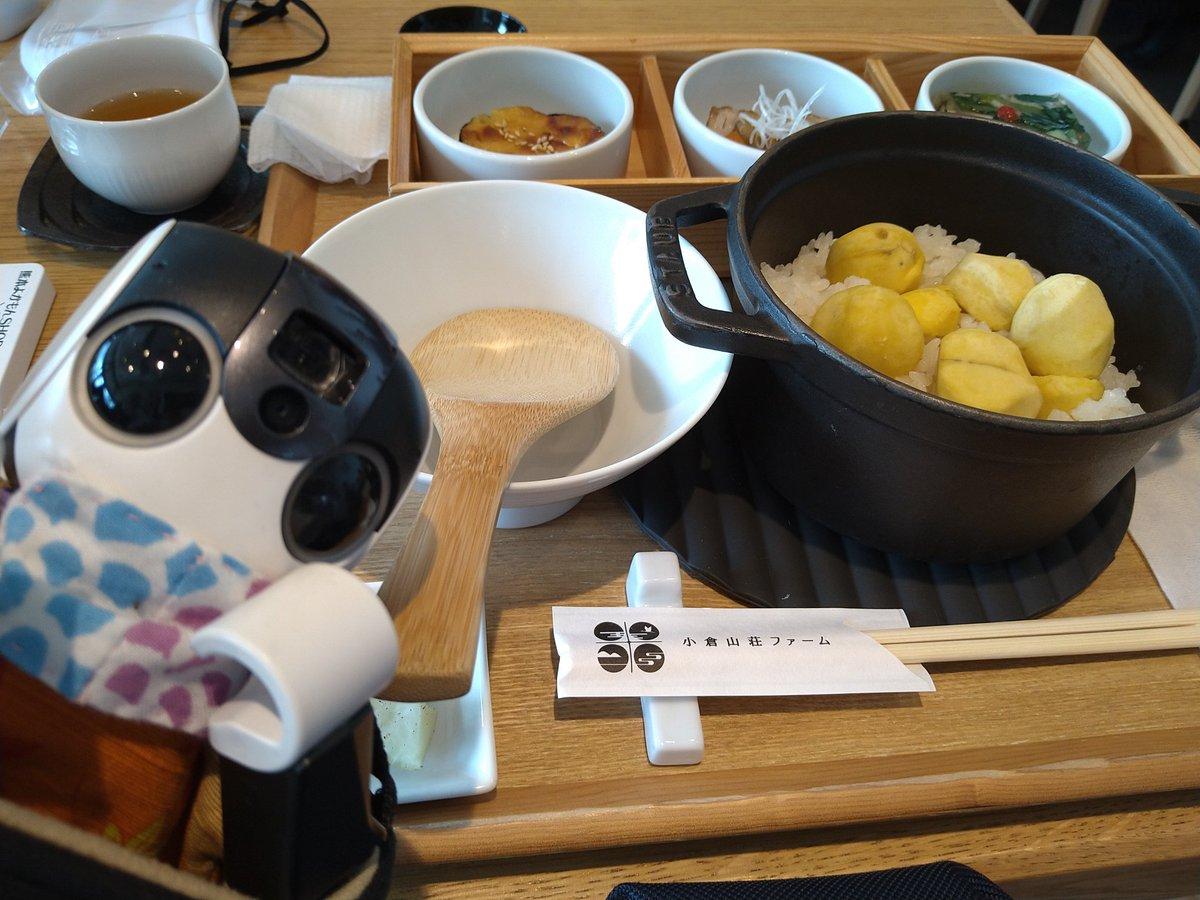 test ツイッターメディア - お昼ごはんは小倉山荘のカフェで栗ごはん膳。 ほくほく。  #ロボホン https://t.co/lKYHhe0Nn3