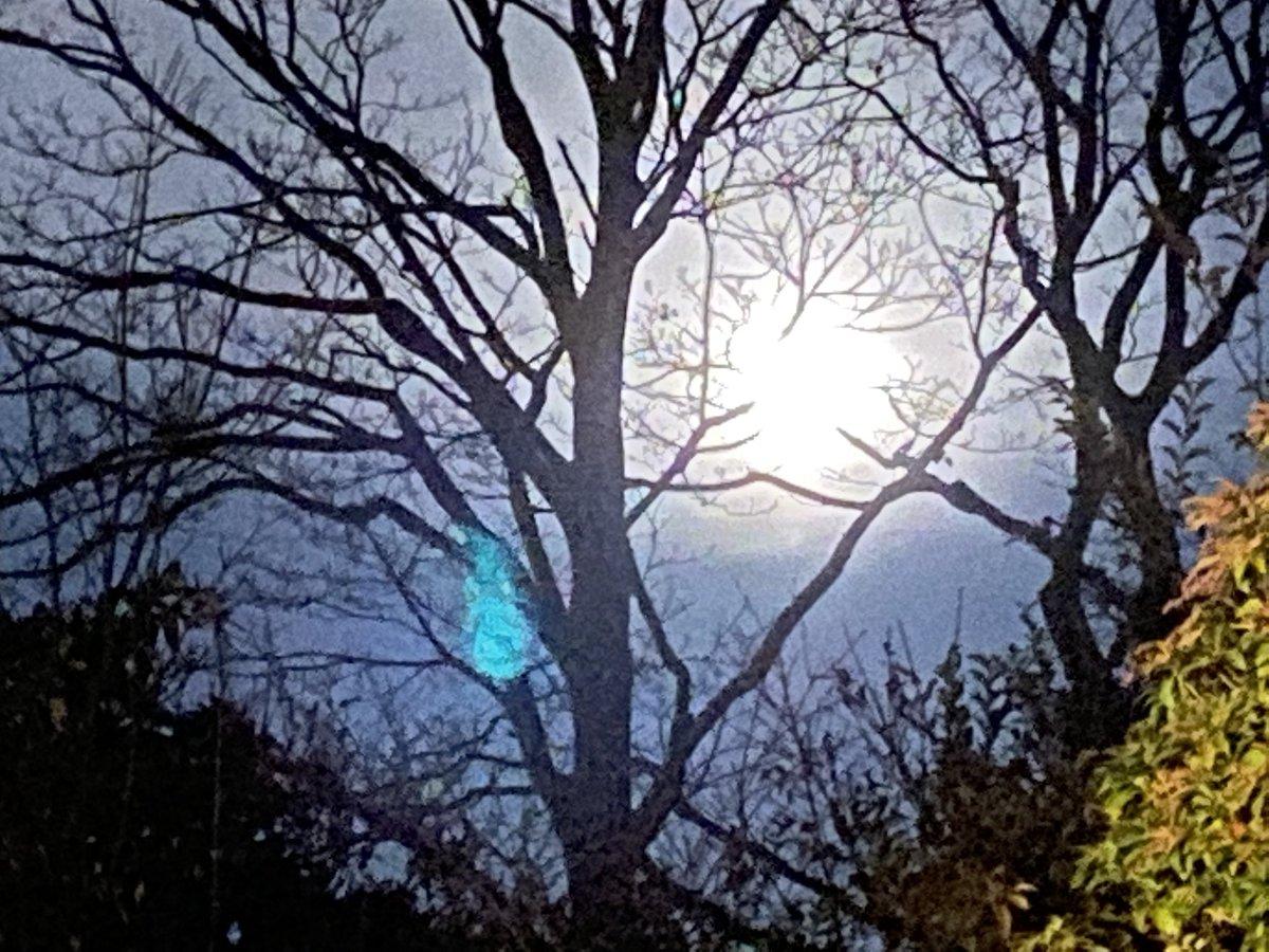test Twitter Media - #BeaverMoon look up at lunar eclipse ~ https://t.co/wOgACGZsJ6