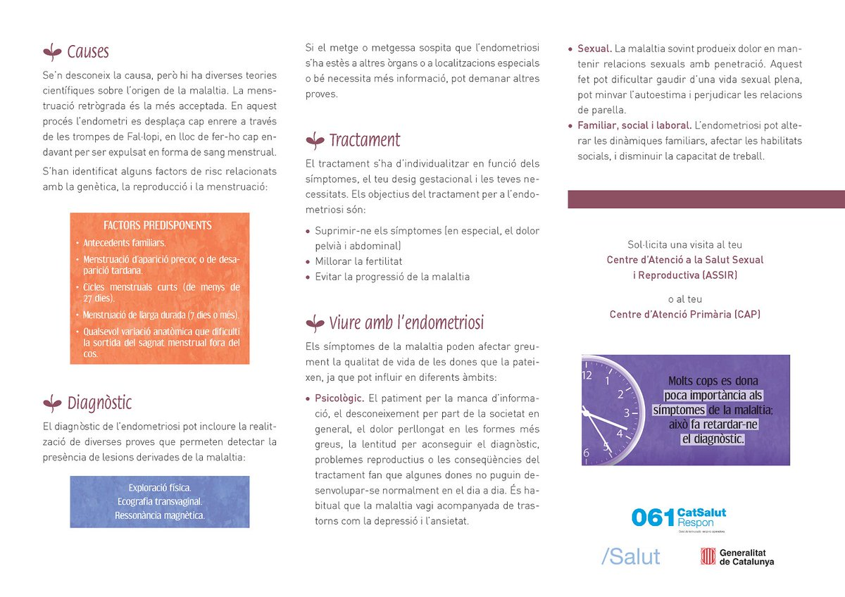 test Twitter Media - 🤔 Tens menstruacions molt doloroses? 👉Endometriosi. Què cal saber?  🔗https://t.co/8XqM8rTPBu @salutcat  #endometriosis https://t.co/ZSGvC5PDPO