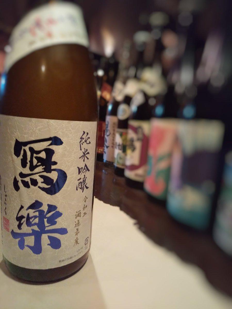 test ツイッターメディア - 口開けの日本酒 「写楽 純米吟醸おりがらみ生酒」 もの凄くおいしいです。 https://t.co/ciWX6SFqSl
