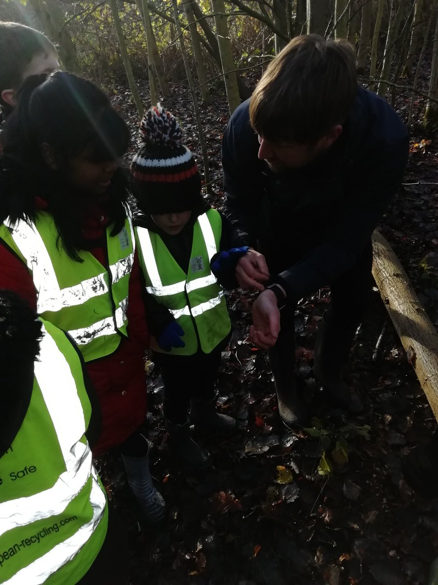test Twitter Media - Deer and Otter classes had fun on a nature walk today looking for winter in Elmdon Park. Part 1 https://t.co/A6Om7TAfFp