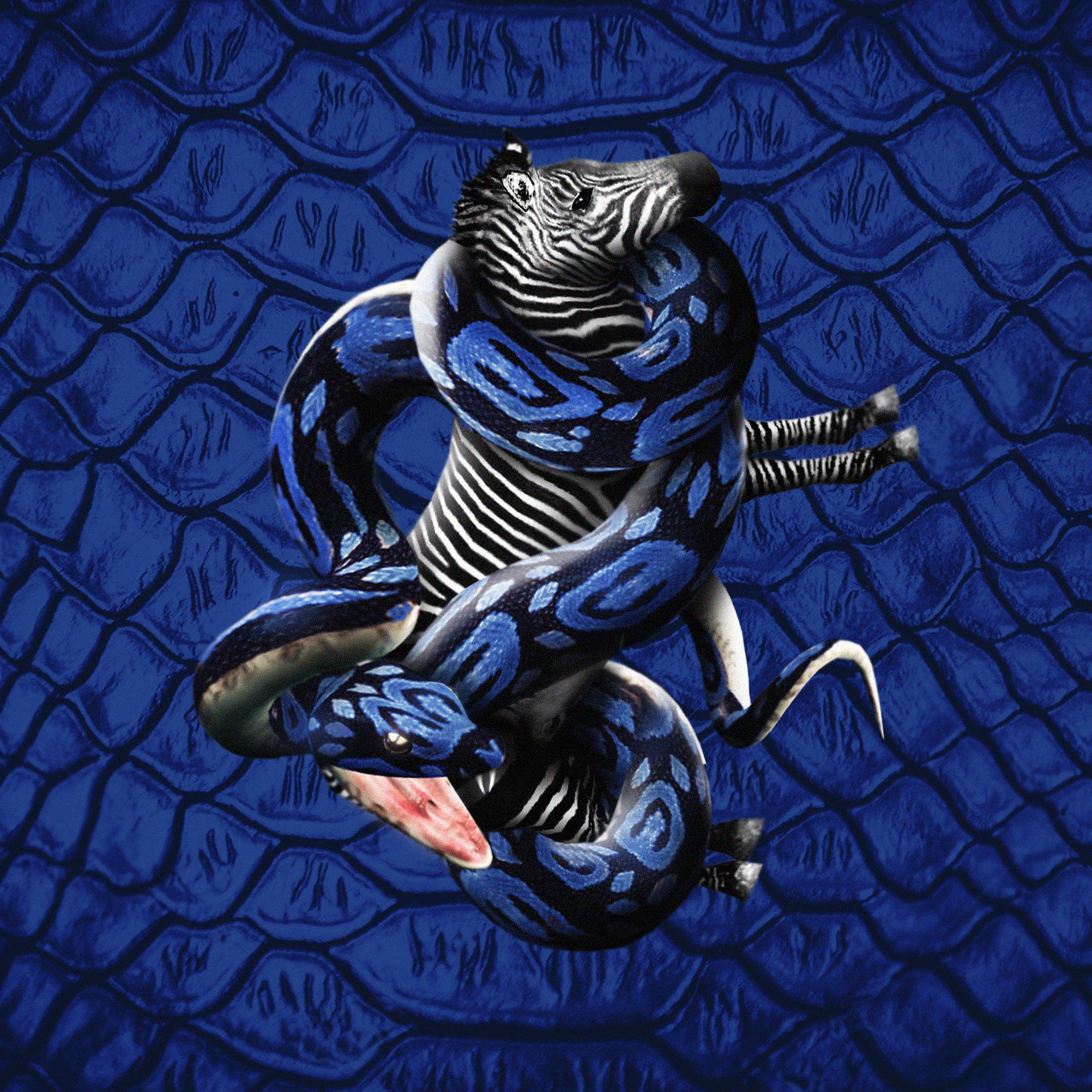 FC Internazionale Milano cover image