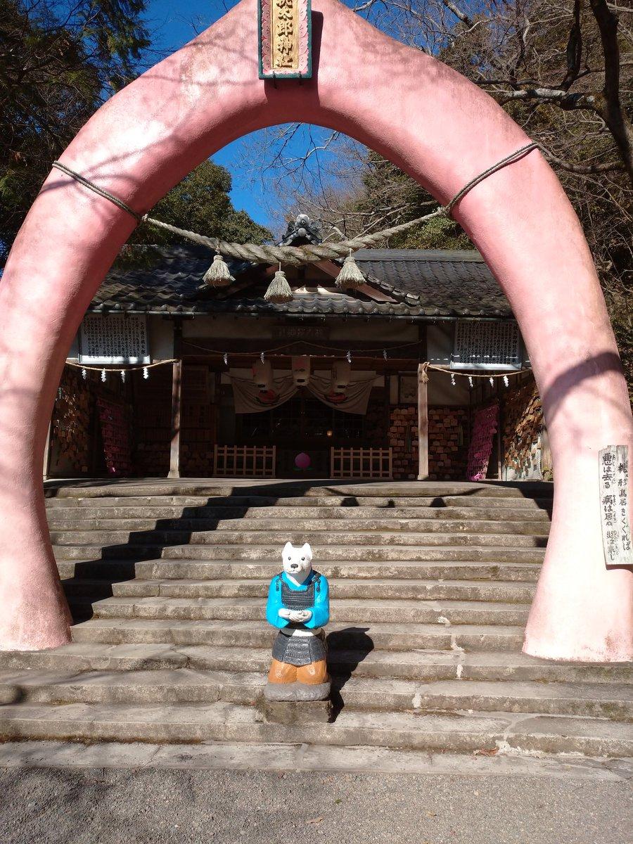 test ツイッターメディア - 天気が良かったので、犬山城から4km弱の桃太郎神社に行って来ました。かわらず シュールな感じがとてもイイです。 宝物館には、桃太郎と鬼(犬にかみ切られた)の珍宝、鬼の金棒などの展示。久しぶりでした。 https://t.co/5prLyg2jpv