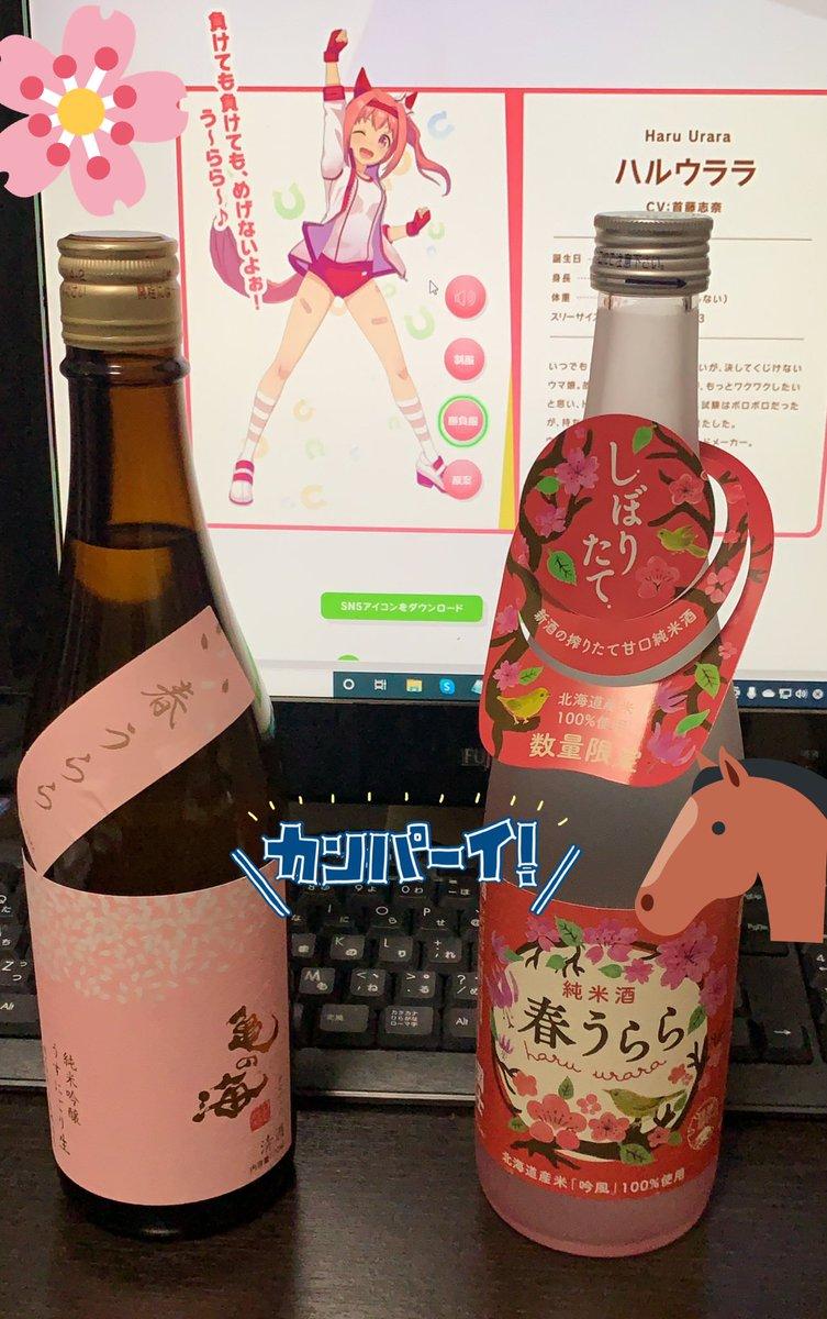 test ツイッターメディア - あのウマ娘と同じ酒が有るのを知っているか!!  頼んだ日本酒が届きました〜! 土屋酒造屋さんの『亀の海 春うらら』 高砂酒造(株)さんの『国士無双 春限定 春うらら』 の2本になります 明日のアプリ開始日と、2月27日のウララ誕生日に飲みます٩(ˊᗜˋ*)و  #ウマ娘  #ハルウララ #日本酒 https://t.co/3XColgLrZG