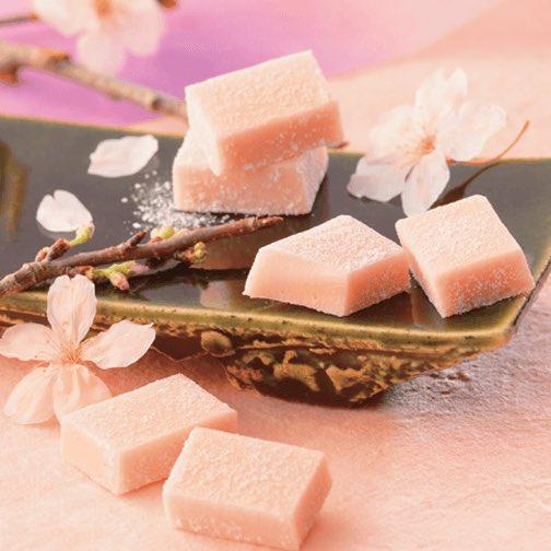 test ツイッターメディア - ロイズにて生チョコレートにちょこまんなどの桜スイーツが、2月16日(火)より発売!  ⇒https://t.co/Tq98JvcT8p https://t.co/NYcQVJEXfs