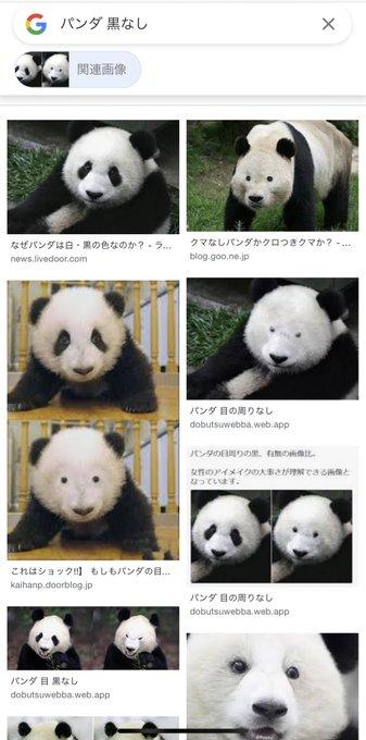 niki_sakinoさんのツイート画像