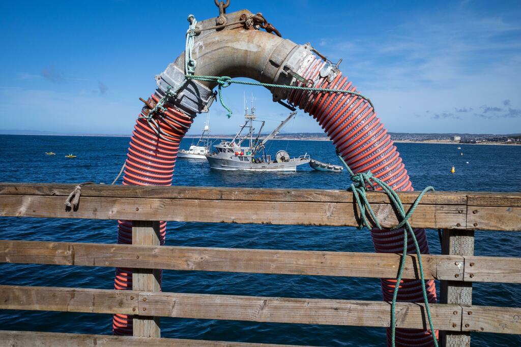 Monterey,CA fishing boat #photography #FolloMe #follo4follo #follobackforfolloback #FolloForFolloBack #follobackinstantly https://t.co/NHnGUrOpZa