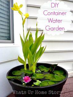 Container pond #plants https://t.co/wwOlxEK9Dg