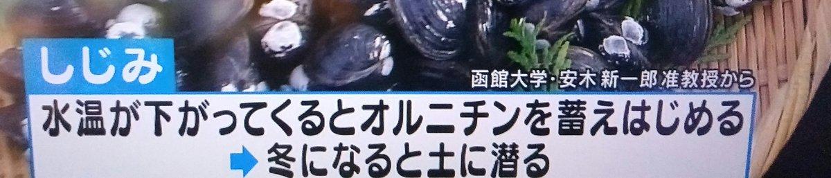 test ツイッターメディア - @kiyukatawani @mikii0u @renachikonoka @074485312 @HaiQ0725 お天気検定の答えは「冬のしじみ」でした  冷凍すると増すそうで https://t.co/WqaLnCle0u