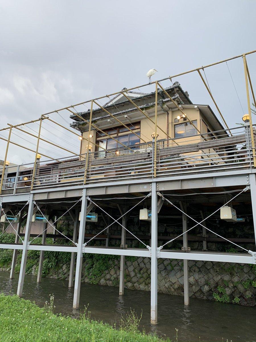 test ツイッターメディア - 京都 河原町行って買い物、鴨川沿いの散歩と何回行っても飽きない。出町桝形商店街、京阪三条前のスタバがお気に。もうちょいしたら京都に電車一本で行けるところに越すので飲み屋開拓もしたい。 https://t.co/dvgBN7HnoF