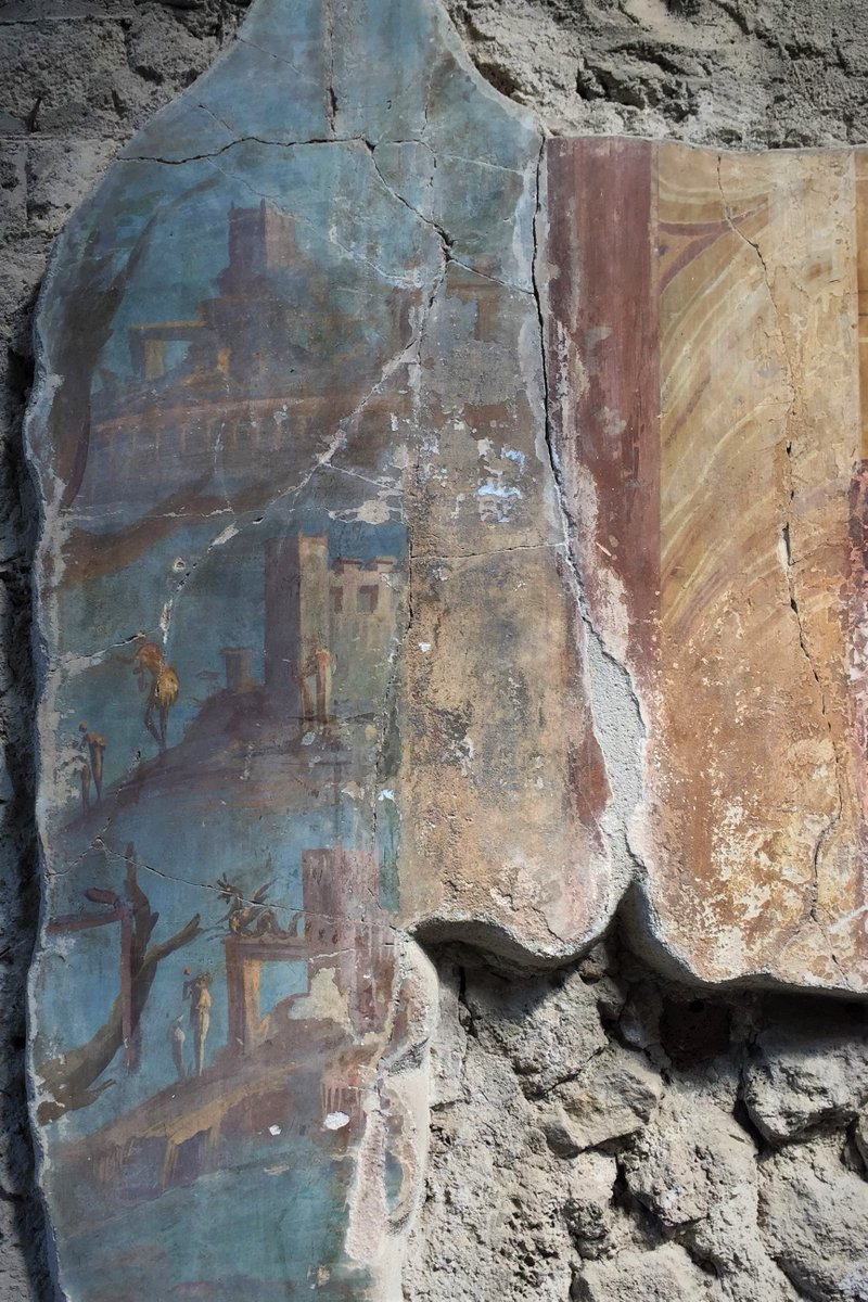 """test Twitter Media - About #FrescoFriday, detail from """"Villa di Poppea"""" in #oplontis #TorreAnnunziata #vesuvio #neaples #archeologia #Archaeology #arqueología #archeologie #italy #archaeological #archeoinfluencer #romanarchaeology #classictwitter #Napoli   https://t.co/z2rjzNJgET https://t.co/EQoeXI9Dl1"""
