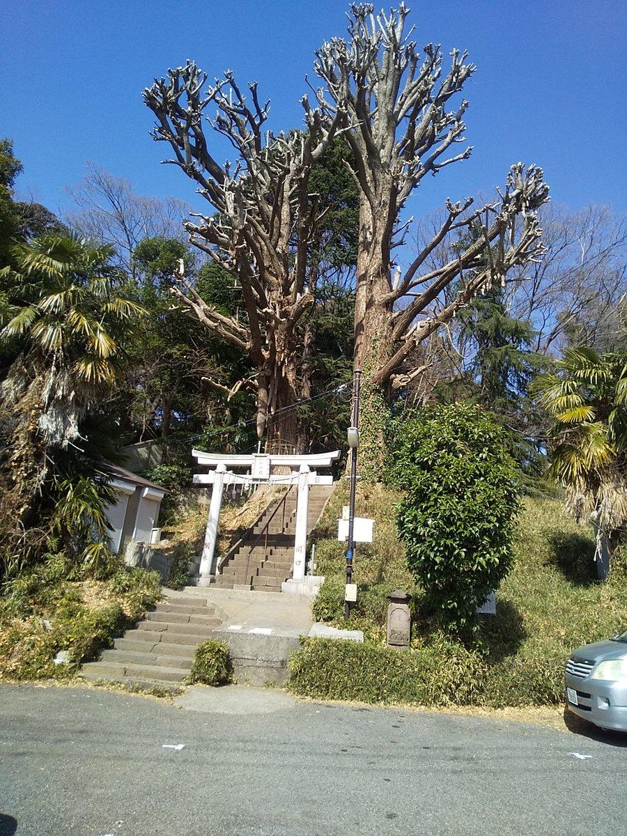 test ツイッターメディア - 今日はバイクの初回点検で早稲田のバイク屋さんへ。 診てもらってる間、歩いて音羽の群林堂まで行った。豆大福を買って、細川邸と芭蕉庵を散歩してちょうど良い時間。 初めて来たけどとても景色の良い所でした(^^) https://t.co/alXysODJuJ
