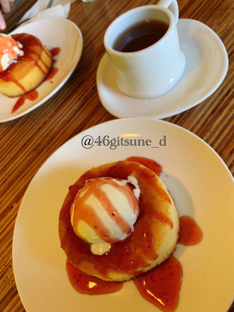 test ツイッターメディア - 高校時代のお友達と地元の可愛い喫茶店でスイーツ食べたり,友達の家で神戸プリン食べたりしたのね!  なごちゃん今日もかわいいね🐰  #cocoriang #tobi #うちのこかわいい https://t.co/act3lQUGss