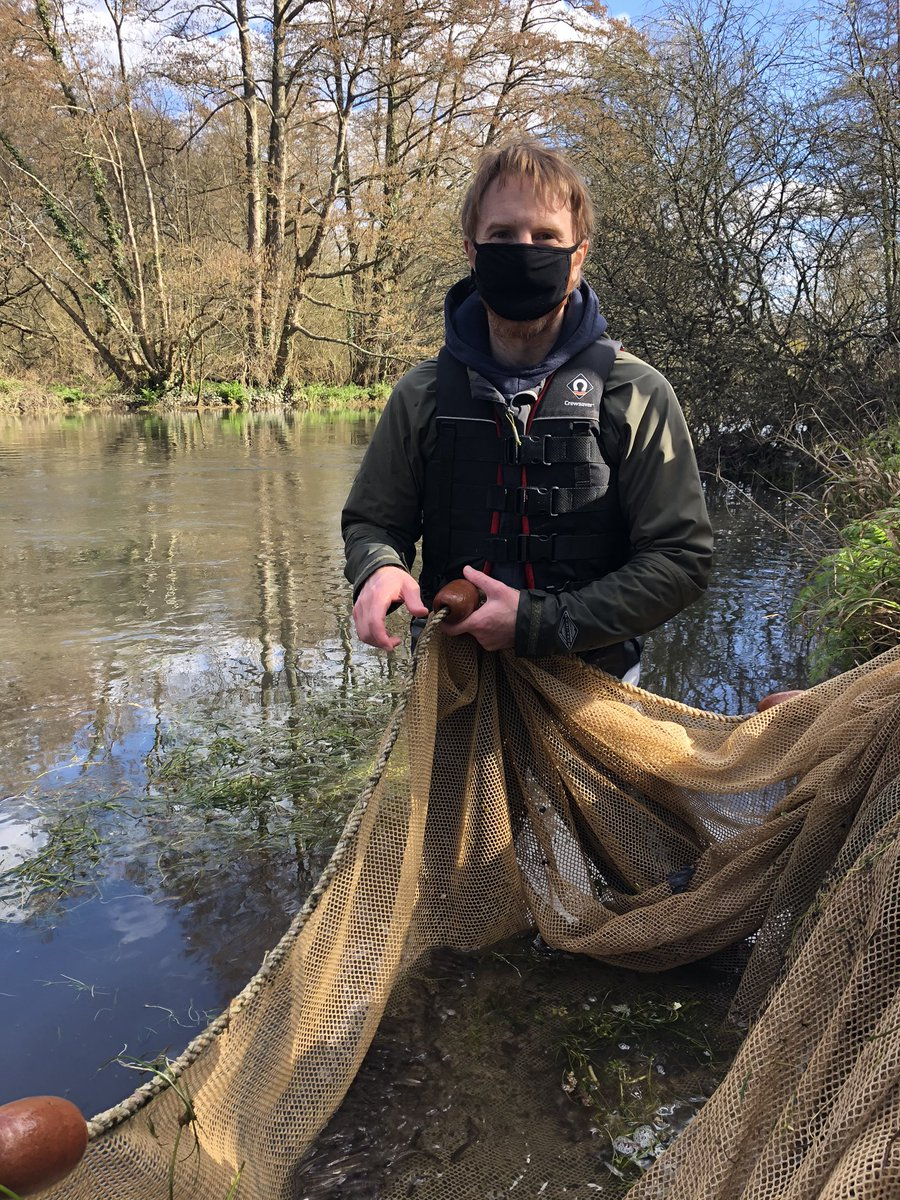test Twitter Media - #fieldwork in the time of COVID looks a little different, but it's still happening for our researchers. Today James Miles collected some Eurasian minnows from the River Itchen for use in experiments aimed at understanding how these fish use visual cues!  #Fish #fieldworkfriday https://t.co/MonwUwNrVx