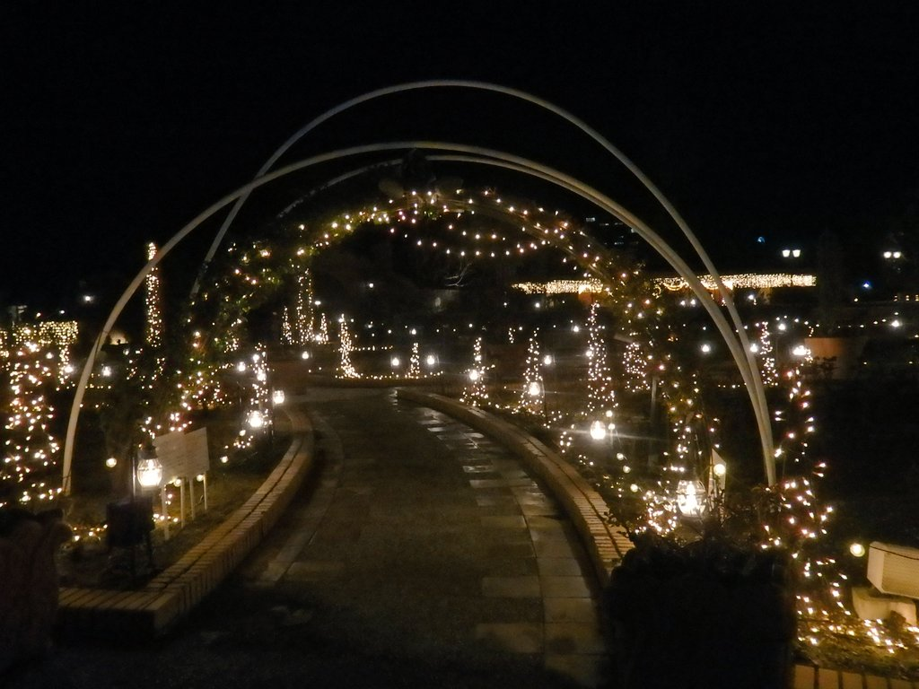 test ツイッターメディア - ソノサキ  📷2021.3.21 (月) ひらかたパーク #ひらパー  #光の遊園地  #キリトリセカイ https://t.co/GgBj6zBJI2
