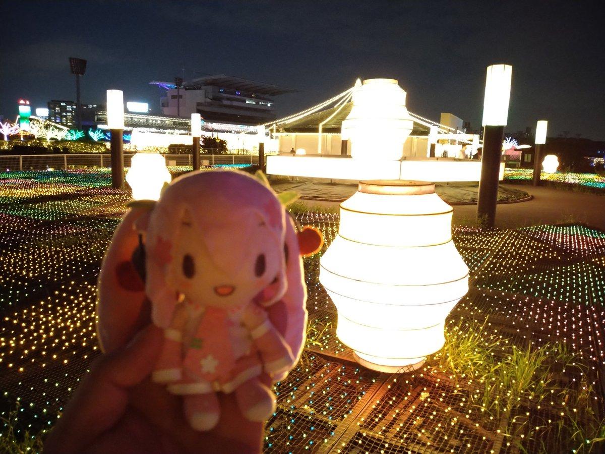 test ツイッターメディア - #深夜の初音ミク撮影60分一本勝負 4/7のお題【ひかり】 光の祭典、東京メガイルミネーション。 大井競馬場にて4/11まで開催しているよ。 https://t.co/PbEioWcLle