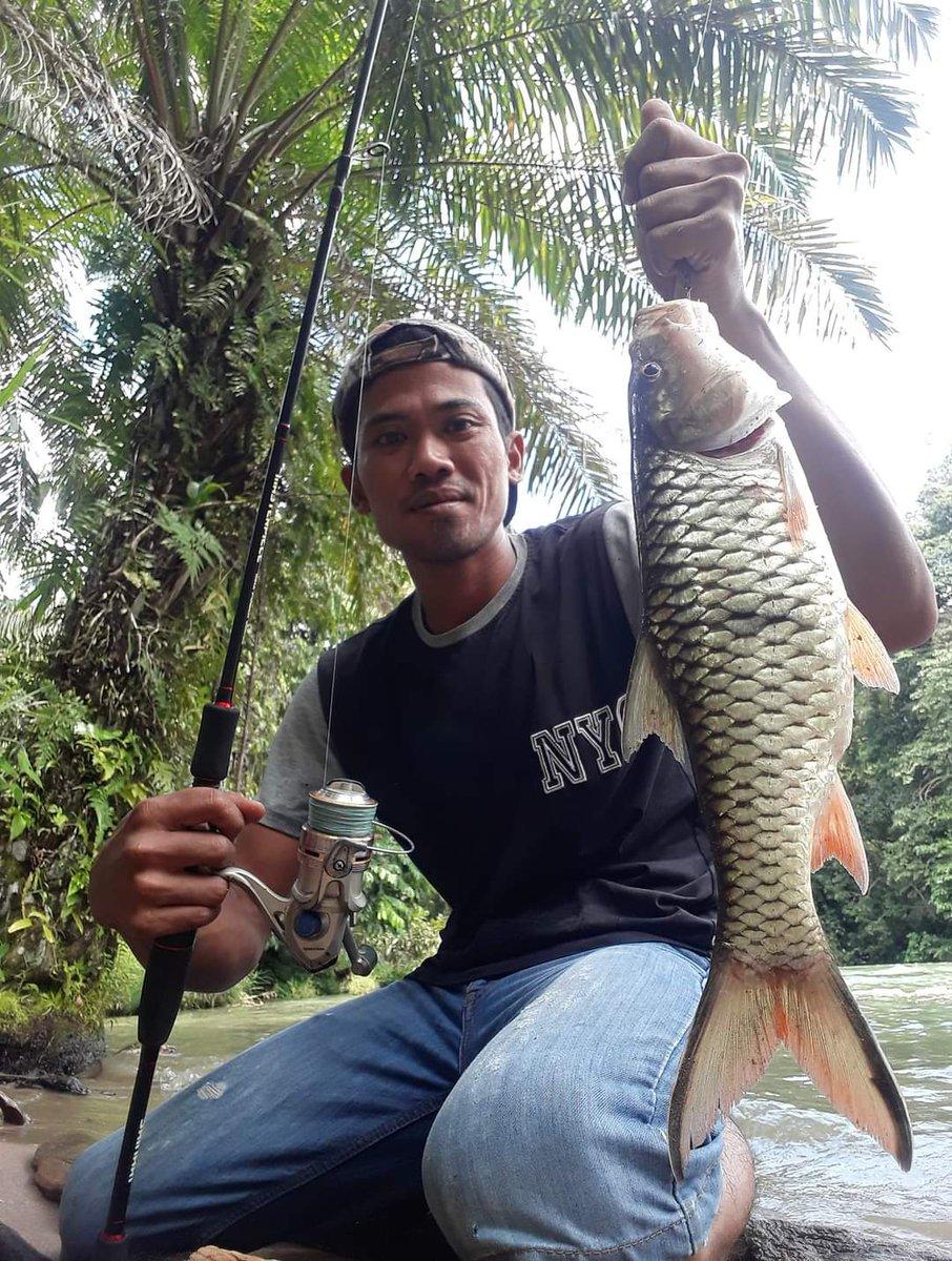 Fishing in the river #carp<b>Fishing</b> #<b>Fishing</b>  #fish  #PalumpuTV @revald56 https://t.co/O