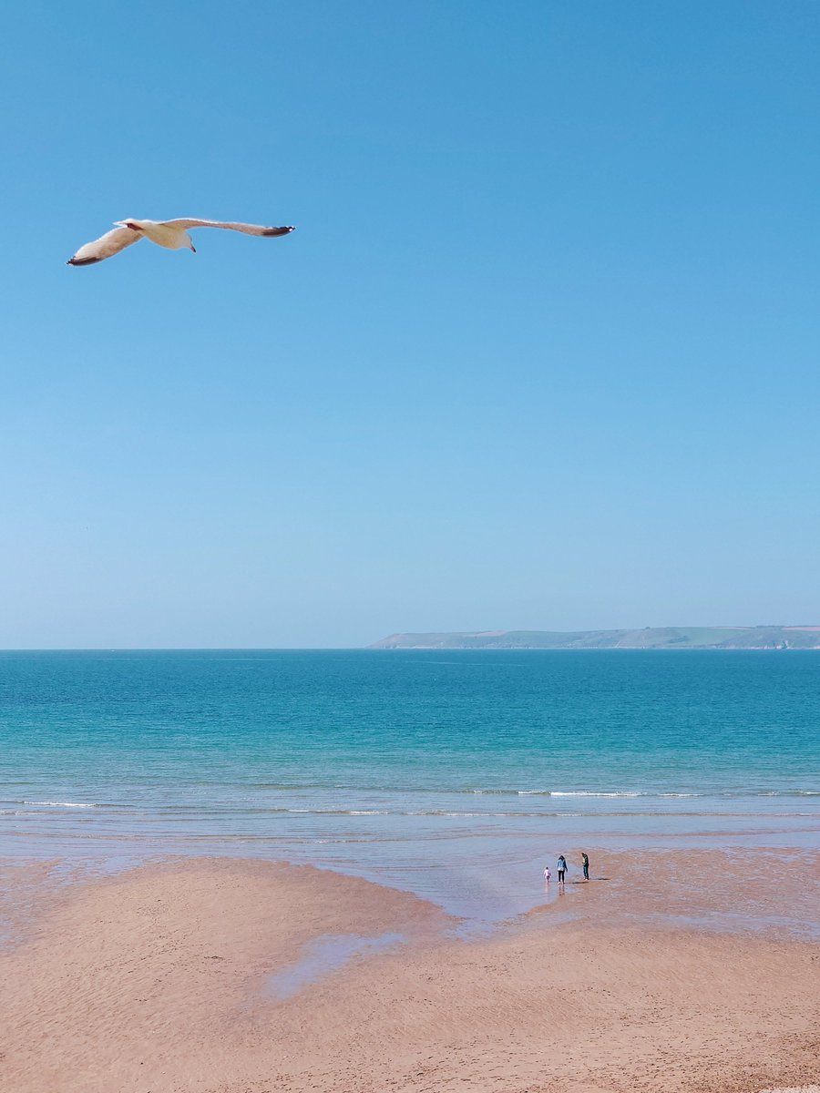 test Twitter Media - B I G B U R Y It's the simple things in life. Blue sky, sunshine, beach, wide-open space and, of course, the pesky seagulls.   #Bigbury #Devon #SouthDevon #VisitDevon #LoveDevon #ExploreDevon #SWIsBest #Beach https://t.co/1EmbVJCr4O