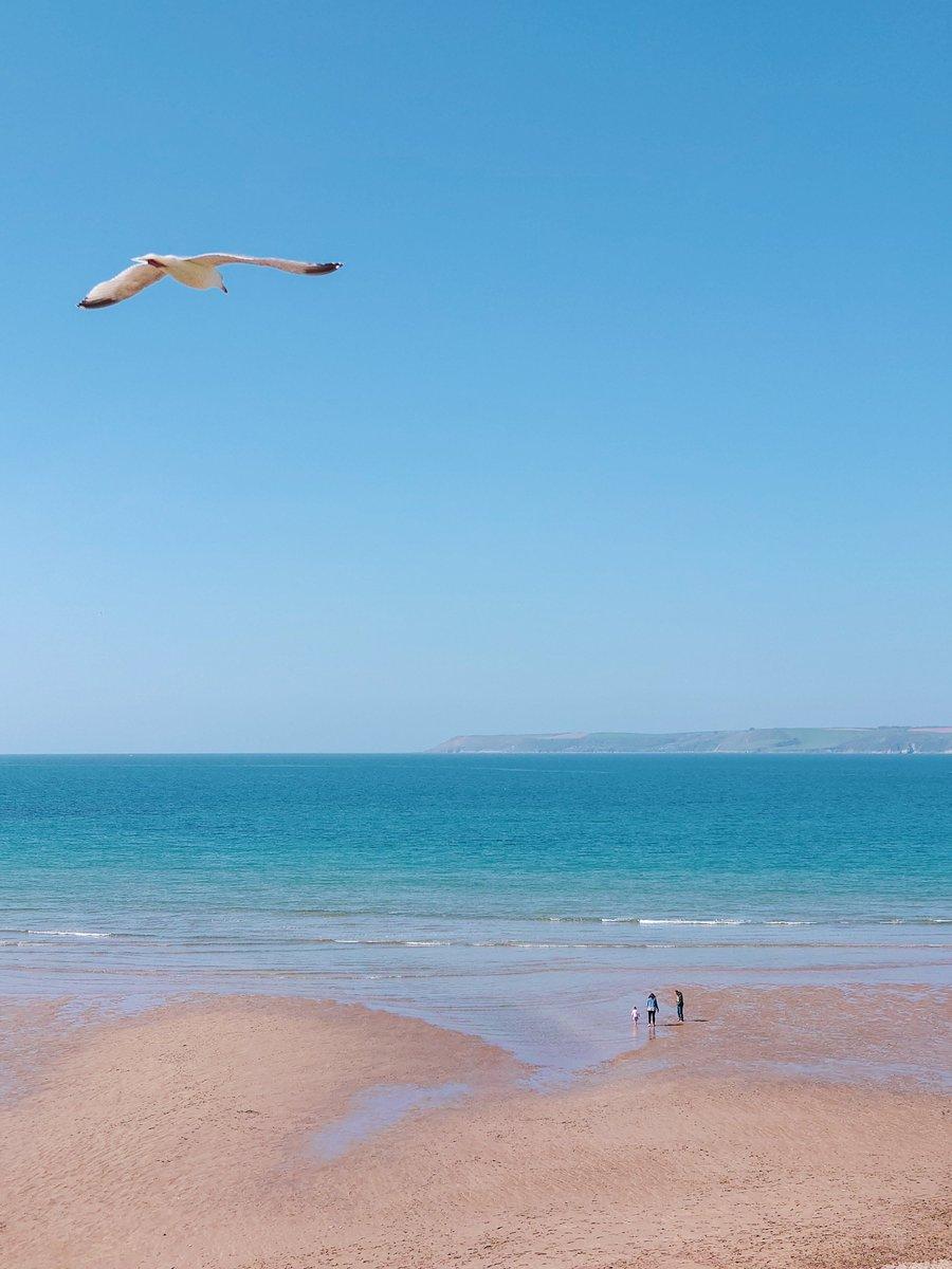 test Twitter Media - B I G B U R Y It's the simple things in life. Blue sky, sunshine, beach, wide-open space and, of course, the pesky seagulls.   #Bigbury #Devon #SouthDevon #VisitDevon #LoveDevon #ExploreDevon #SWIsBest #Beach https://t.co/1EmbVJCr4O