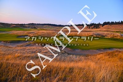 test ツイッターメディア - 全米オープン開催地、チェンバーズベイの写真も取り扱っております! 小平 尚典 - チェンバーズ・ベイ(Chambers Bay)138 https://t.co/IJ917hDpJl #小平尚典 #ゴルフ場 #風景 #チェンバーズ・ベイ(ChambersBay) https://t.co/F0EboLJxCE