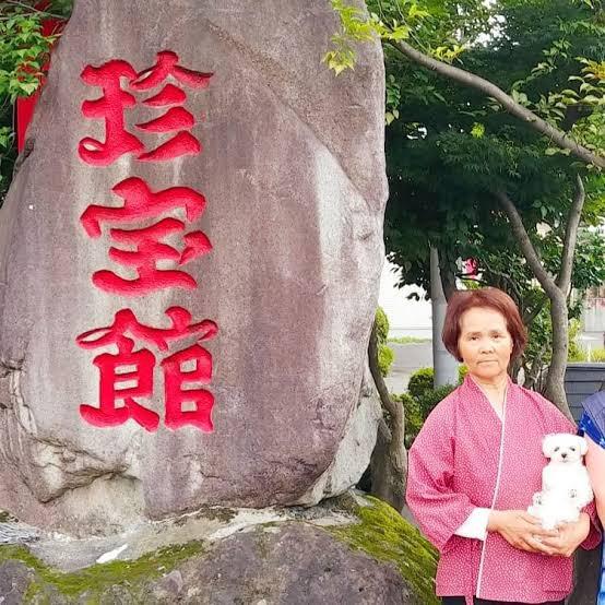 test ツイッターメディア - 群馬県にある珍宝館館長のチ◯子さんもびっくりだわ。 https://t.co/rwOHQtbymS https://t.co/k3BAHsMZWx