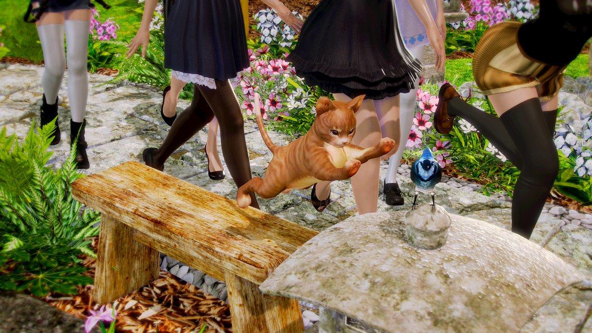 test ツイッターメディア - このシーンを作るに辺り、画面のワンポイントに 猫さんを配置してみたらやたら可愛くなったw #ハニーセレクト #艦これ #私服艦娘 #猫さんカワイイ https://t.co/5OUsQ4UF1C