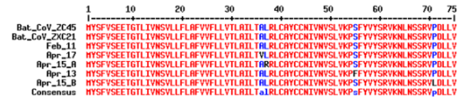 With a relatively high mutational rate, however, the early strain of SARS-CoV-2 has a 100% identical E Protein AA sequence with the previous military-owned virus species (ZC45 and ZXC21).  Forensic explanation: Zhoushan bat CoV ZC45 and ZXC21 were the viral backbones.