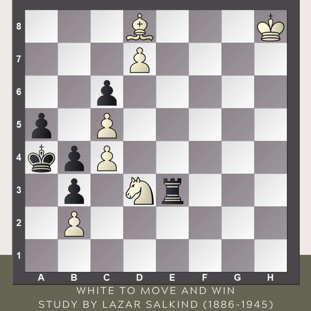 test Twitter Media - No moves for black king and pawns so the stalemate alert is flashing red. 🚨 White should be careful.  #FridayStudy #YourMove https://t.co/T0WSedO7mC