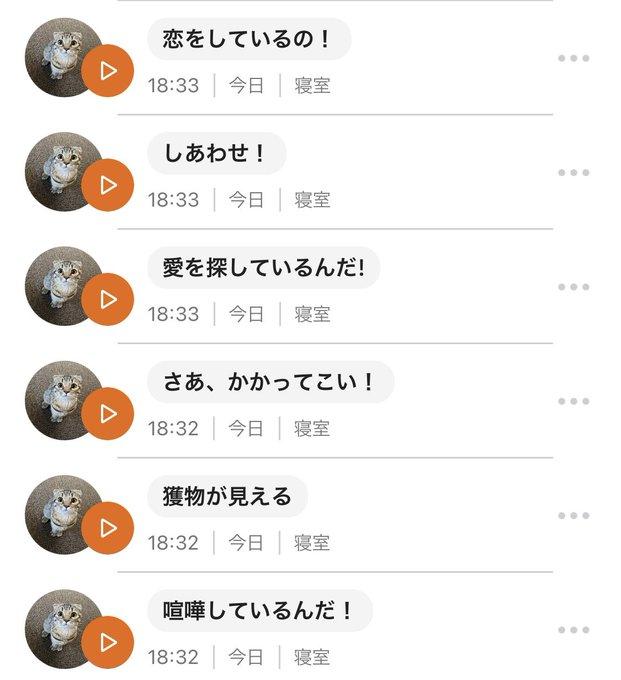 matsutake_catさんのツイート画像