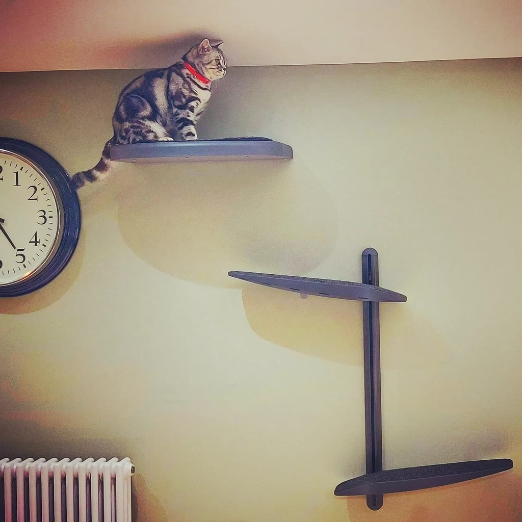 test Twitter Media - Put up our new #catipillacats wall-mounted tower and shelf today. It already seems to have met with approval from the target audience.  @catipillacats #catsofinstagram #climbing #cattree https://t.co/4qveQuzW8Z https://t.co/7TVreG8Lia