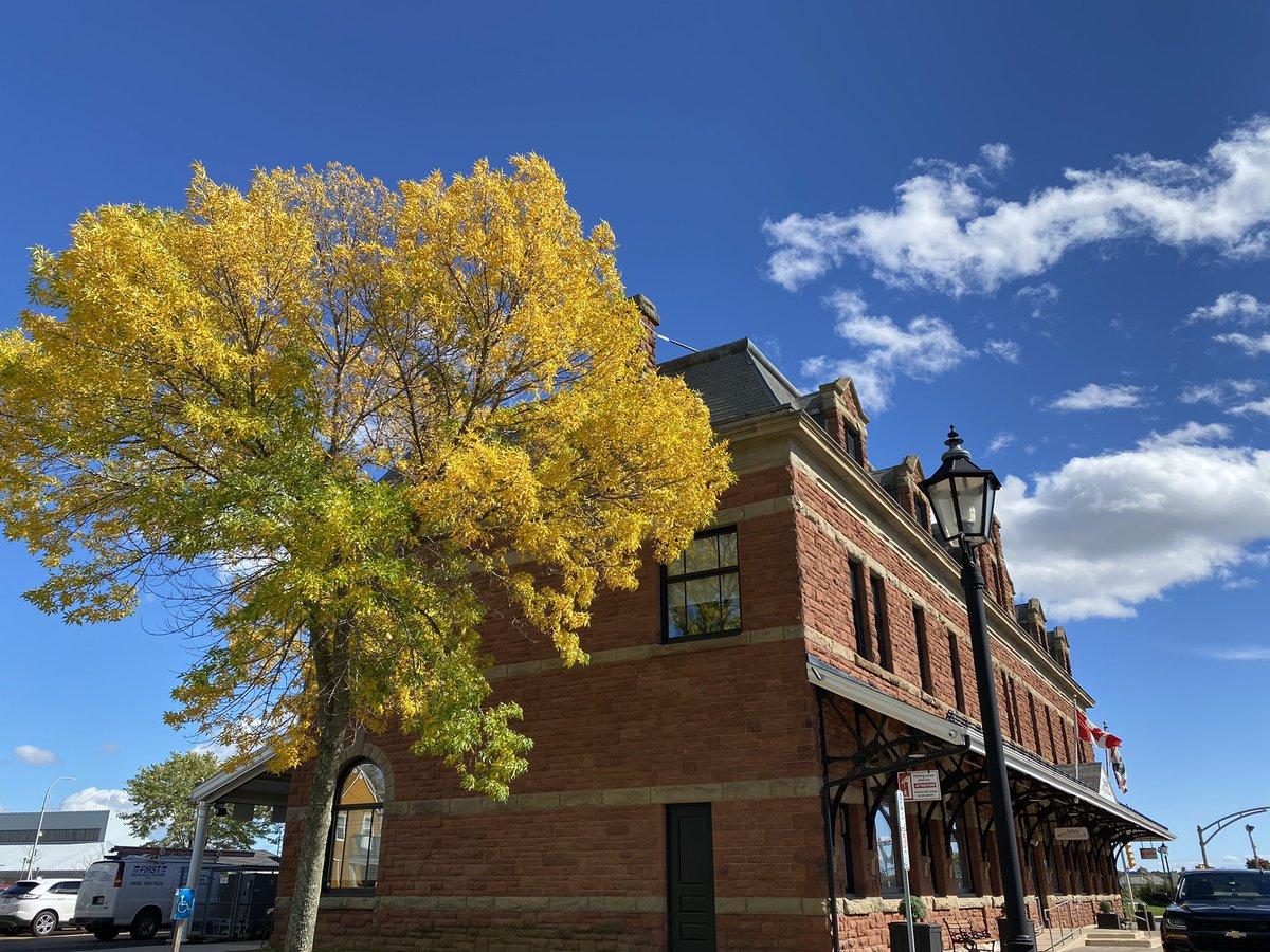 test ツイッターメディア - シャーロットタウンの街中、ポケモンGOしながら🤣お散歩してたら、駅のところに黄葉した木が❣️青空に映えて美しい〜〜😍 普段歩かないところも、たまに歩いてみると素敵な発見がありますね😊  #プリンスエドワード島 #駅跡 #シャーロットタウン #黄葉 #秋の色 #秋の空 https://t.co/vCTkN7hWLa