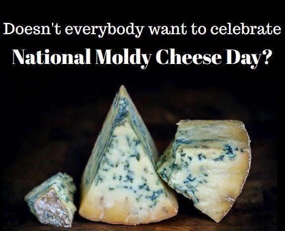 test Twitter Media - #dailynonmtgcontent #random Happy National Moldy Cheese Day! https://t.co/PF2w0IroGw