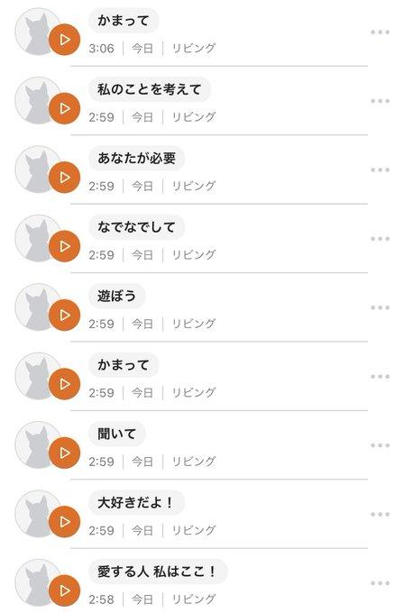 __yamanamiさんのツイート画像