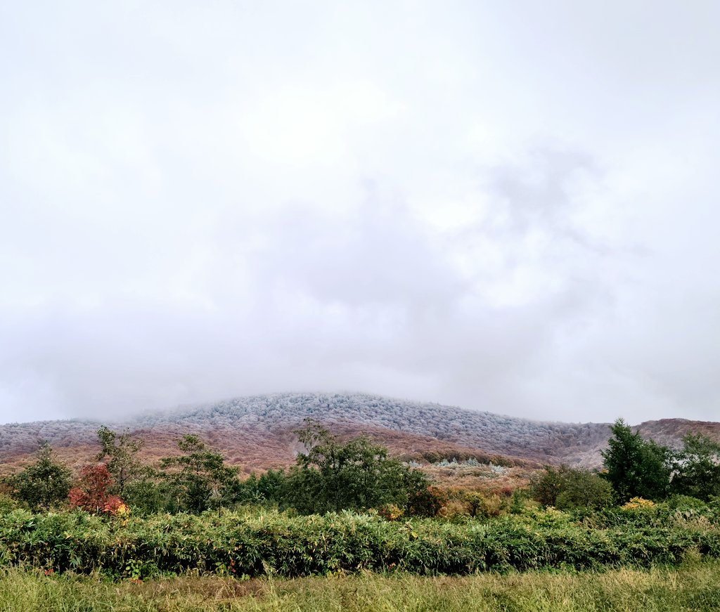 test ツイッターメディア - 朝から雨  こんな天気だけど 城ヶ倉大橋来てみた  遠くに白く染まった山々 やっぱ 八甲田には雪見える  風が強いのはいつもだけど 顔 凍みでまる~ 寒っ:;((• •๑));:  #初冠雪 #八甲田山系 https://t.co/xLtl12FgyQ