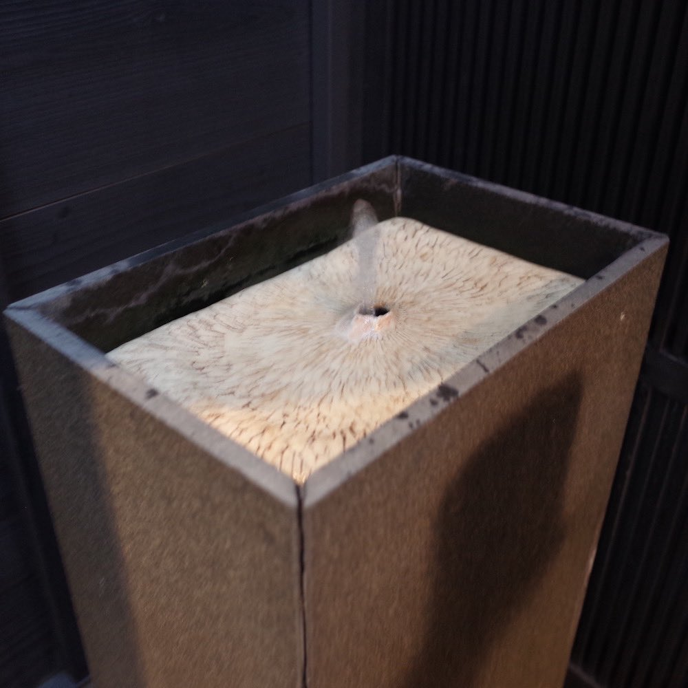 test ツイッターメディア - 甘納豆かわむらの限定発酵あんこスイーツ!とふっさふさの苔と中嶋寿子さんの作品。 #金澤町家巡遊 https://t.co/oN4rwj6mjq