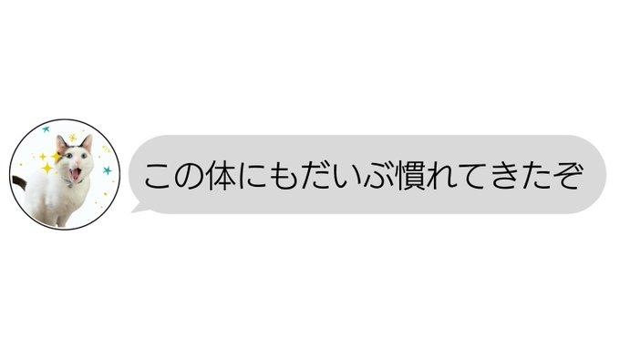 tsukune216さんのツイート画像