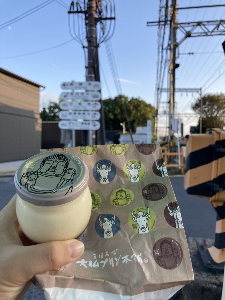 test ツイッターメディア - まほろば大仏プリン、奈良の地酒味 https://t.co/HrtJmWVysR