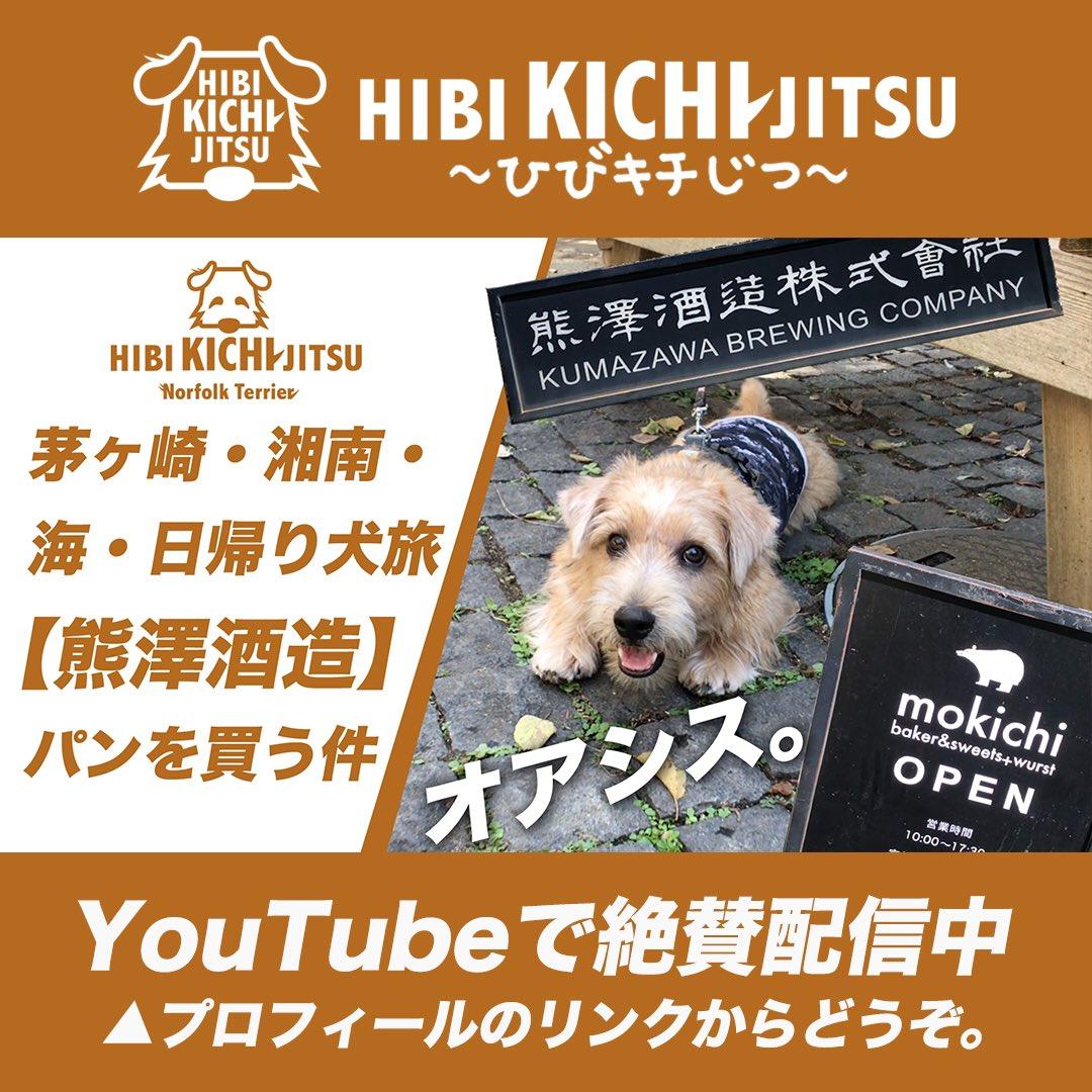 test ツイッターメディア - 茅ヶ崎・湘南・海・日帰り犬旅【熊澤酒造】子犬とパンを買う件。 https://t.co/t3G4KTksXD @YouTubeより https://t.co/JyHbtrQVws