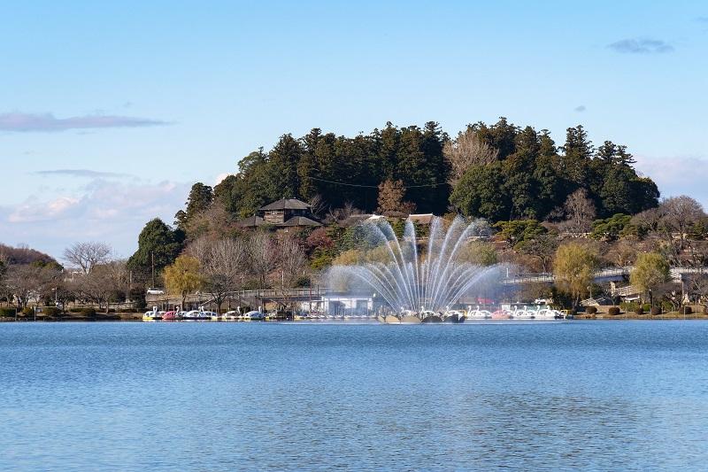 test ツイッターメディア - #1024岡山戦『水戸市の日』開催🐲  💮水戸市のご紹介💮 水戸の名所といえば、梅で有名な日本三名園「偕楽園」  隣接する千波湖は、ジョギングやウォーキングを楽しむ人も多い市民憩いの場です🏃♂️🏃♂️🏃♂️  #水戸市 の皆様と共に戦い、勝利を🔥  #水戸ホーリーホック https://t.co/trxuugs5NE