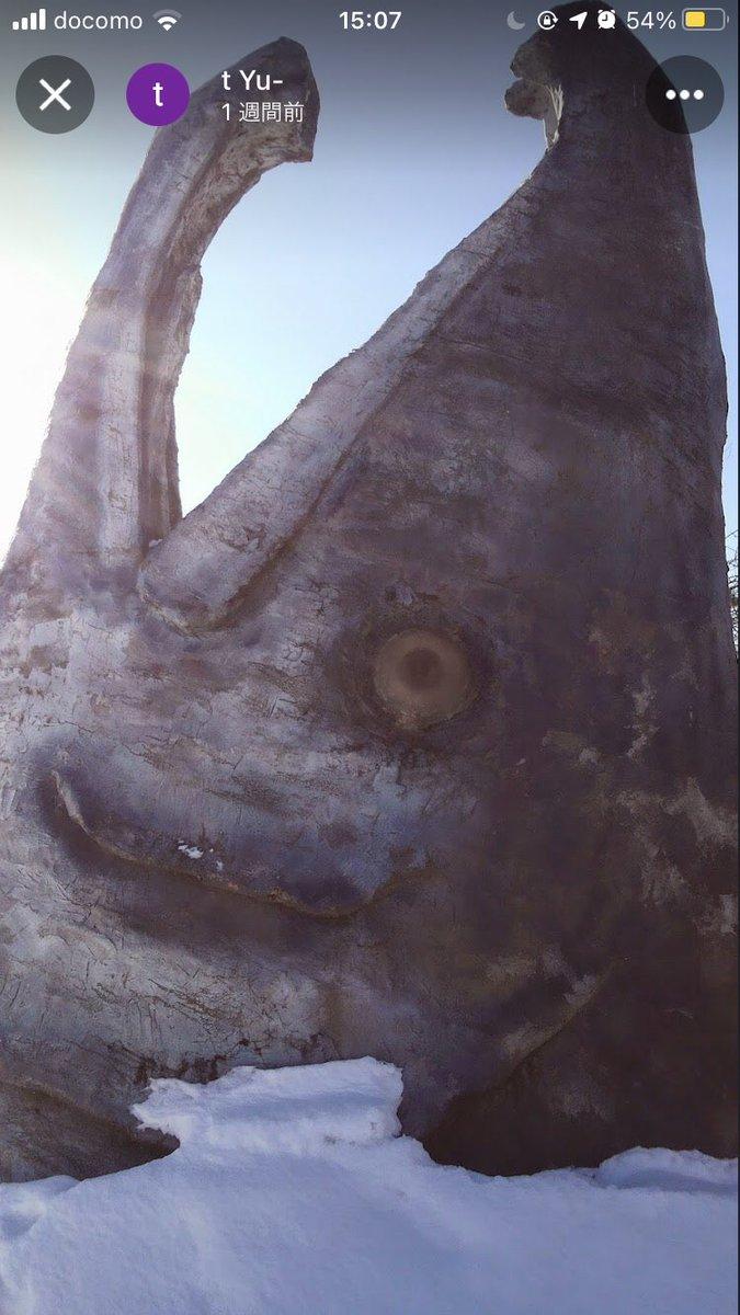 test ツイッターメディア - 中標津にこんな鮭のオブジェがあるからやっぱ鮭なんかな? 北海道をイメージする魚は?と素直に考えたら鮭なはずなんだけどね。 くちばしの先が鍵状になってる鮭画像検索じゃ出てこなかったけど、個体差? https://t.co/oPJcvUEP1V