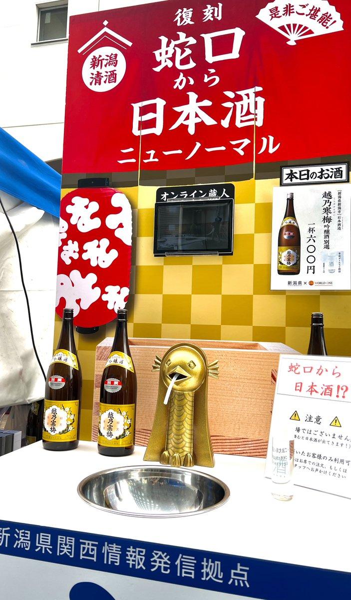 test ツイッターメディア - おはようございます!  サンノミヤシテイピクニック ❤️❤️  今日まで出店させて頂いてる、  弊社ワールドワンと  新潟県のコラボーーー😍😍  蛇口から日本酒‼️‼️  八海山、久保田に続き、今日は、  越乃寒梅🍶🍶  私、出勤前なのでガマンしましたが、、  青空の下で蛇口で日本酒!  最後やないかーい💕 https://t.co/utQrOHmMrR https://t.co/sTgU2Kujo0