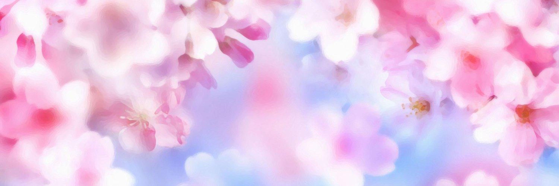 坂本涼子の画像 p1_27