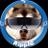 xHoloDog(ホロ犬)