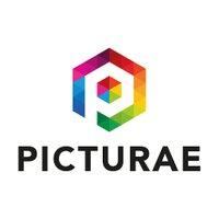 Picturae_NL