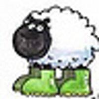 BoggerBlogger | Social Profile