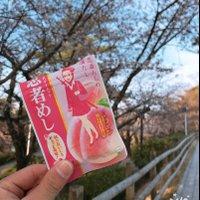 @Okazaki_Gummy