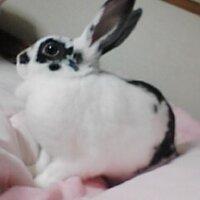 藤 秋人   Social Profile